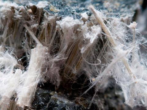 homepage-asbest